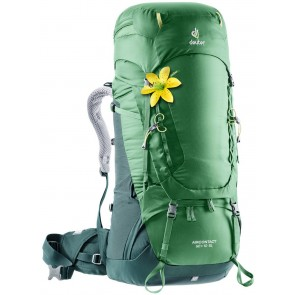 Deuter Aircontact 60 + 10 SL leaf-forest-20
